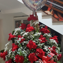 Cesta com 20 rosas importadas e balão  de gás  hélio