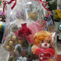 Cx ursinho, ferrero rocher com 12 unidades, 5vs mini cactus, rosa nacional aberta e cartão